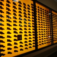 la brea tar pits display case