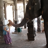elephant blessing hampi india