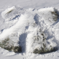 time made snow angel back college